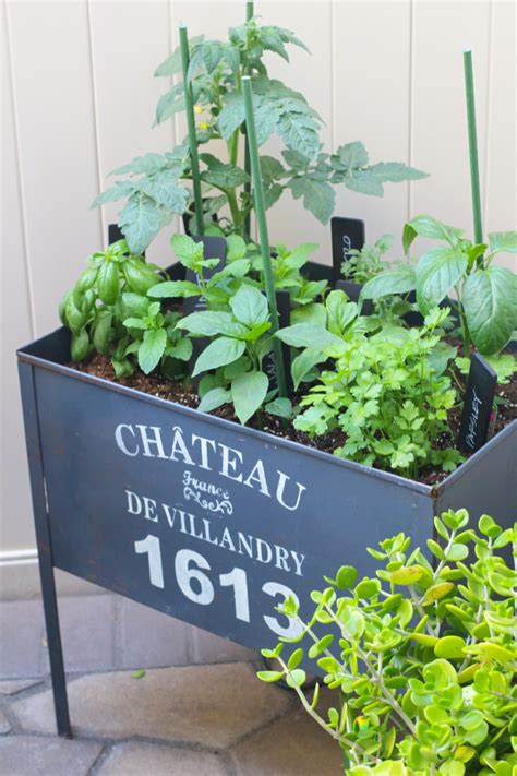 diy herb garden outdoor herb garden