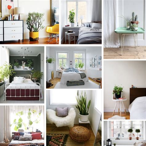 bedroom with plants plants for bedroom marceladick com