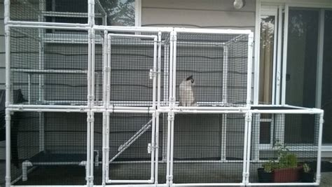 Kandang Kucing Well Cage landon homes unique custom homes check out the catio