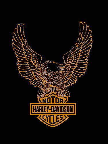 Kaos Harley Davidson Logo White 17 best ideas about harley davidson logo on
