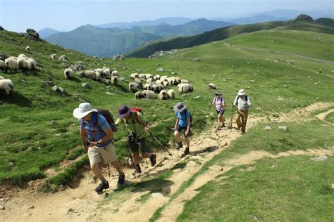 camino pilgrimage spain el camino de santiago pilgrimage the way to the of