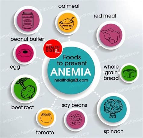 7 Ways To Prevent Anemia by Foods To Prevent Anemia Health Wellness