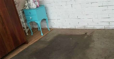 DIY STENCILED CONCRETE FLOOR   Hometalk