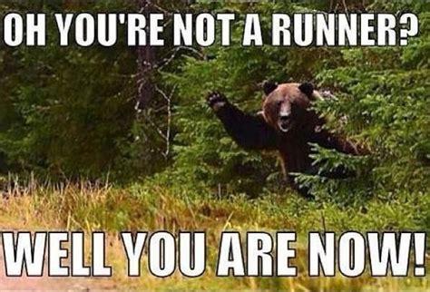 Running Bear Meme - running funny fitness fitness pinterest