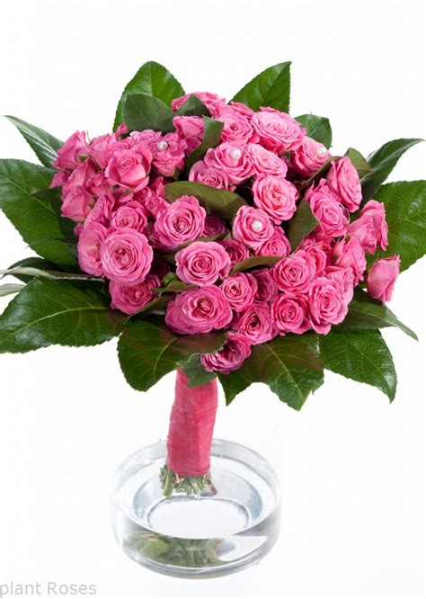 Handsock Cincin Bunga Cantik jual cincin polos welcome to www sumberharga