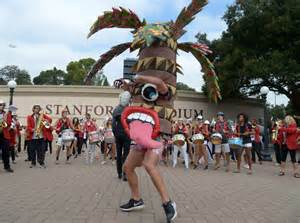 tree mascot the new stanford palm tree mascot is here to for