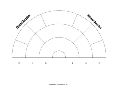 4 generation family tree fan chart template