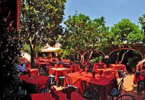 giardini degli aranci ischia it fotogallery ristorante giardino degli aranci