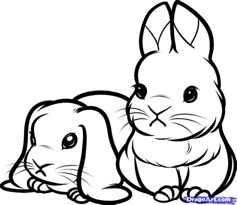 coloring pictures of baby bunnies printable coloring pages of baby bunnies animals