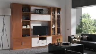 Storage Units For Living Rooms Living Room Breathtaking Living Room Storage Units Ideas
