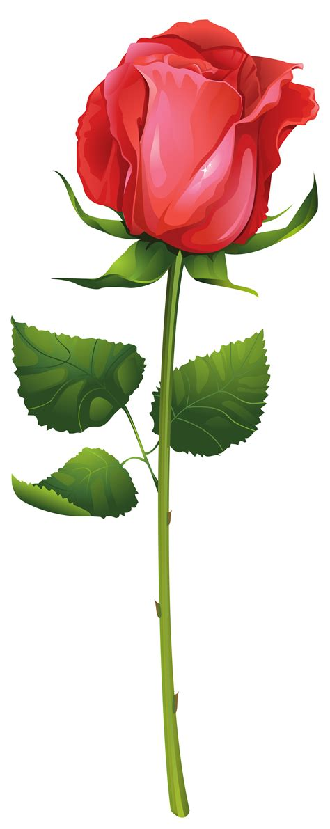 Stem Roses by With Stem Clipart Best