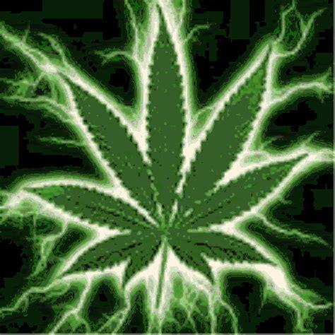 imagenes chidas weed la marihuana la marihuana
