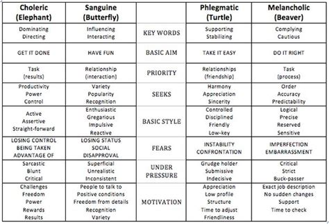 Choleric Personality Essay by Best 25 Sanguine Personality Ideas On Phlegmatic Personality Temperament Types And