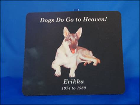 do all dogs go to heaven grieving the loss of your pet books dogsdogotoheaven by karyn garvin