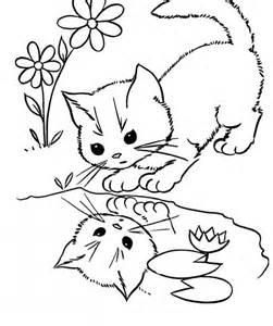 cat face pics coloring home