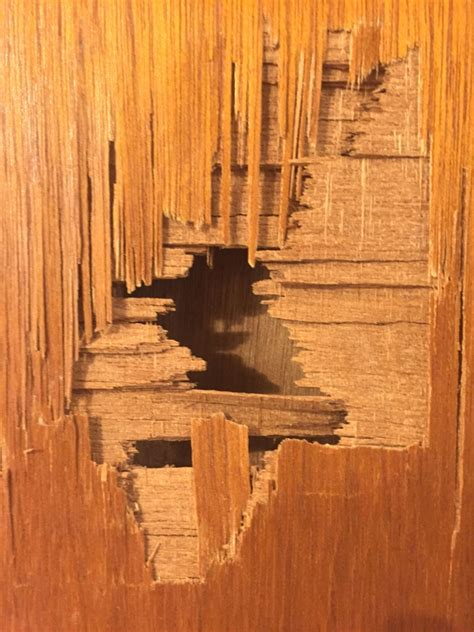 how to fix wood paneling how do i fix a hole in this wooden door bogleheads org