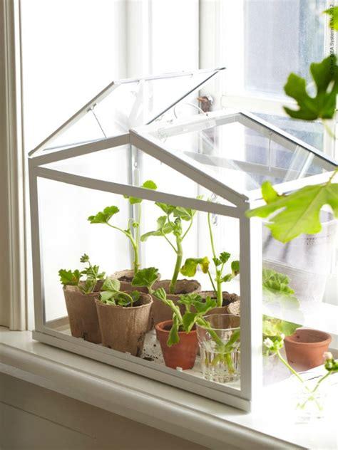 Groente En Kruiden Op Een Balkon Small Greenhouse Interior Plans
