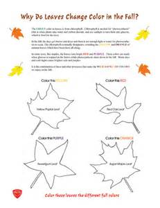 why leaves change color how do leaves change color apps directories