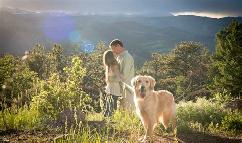 boulder golden retrievers propose with you in the colorado mountains