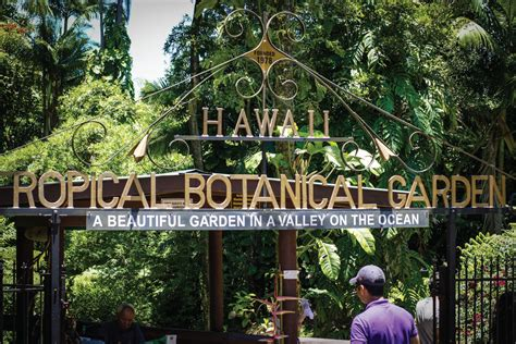 Hawaii Tropical Botanical Garden by Hawaiian Tropic Botanical Today S Nest