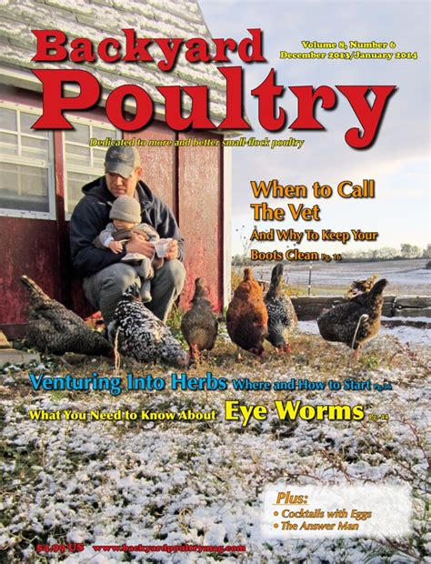 backyard chicken magazine backyard chicken magazine 1000 images about backyard poultry covers on poultry backyards and