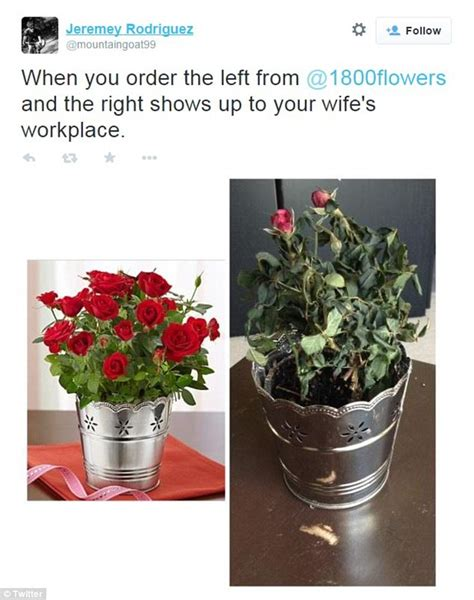 floral arrangments or when words fail say it with flowers decor ideas pinterest flower 1 800 flowers customers complain about wilted valentine s