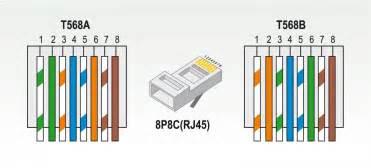 cat 5 wiring scheme cat get free image about wiring diagram