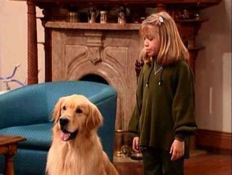 comet from full house 19 signs you might be comet from quot full house quot