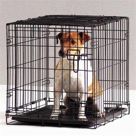 cages for puppies savic cottage cage 61cm on sale free uk delivery