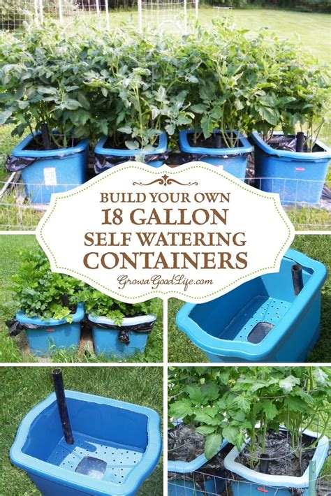 how to make a self watering planter 25 best ideas about self watering on self watering pots self watering planter and