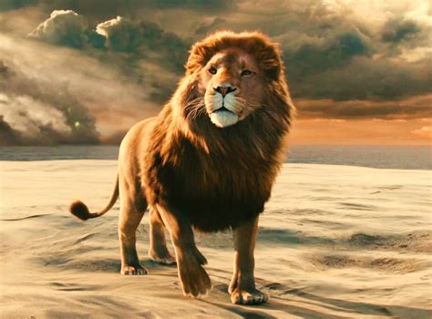 Aslan In The The Witch And The Wardrobe the chronicles of narnia the the witch and the