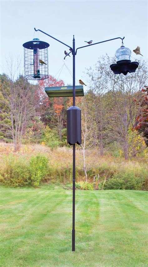 squirrel proof bird feeder pole system unique bird feeder
