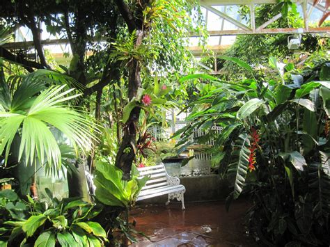 jungle garden design ideas fresh house with guest and