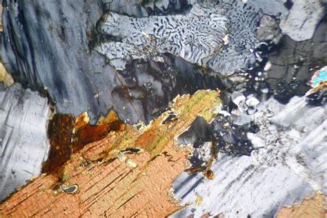 granodiorite thin section myrmekitic granodiorite thin section microscope slide geosec