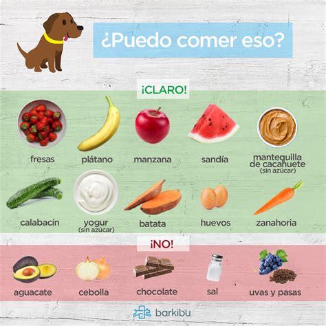 alimentos mascotas alimentos que pueden comer los perros perros