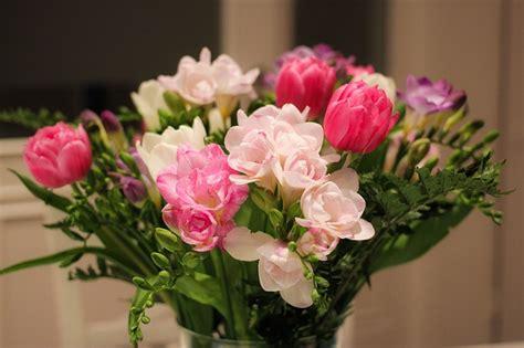 5 fiori perfetti per un 5 fiori ideali per un matrimonio a marzo lombarda flor