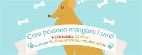 alimenti velenosi per cani cosa possono mangiare i cani 9 cibi tossici 23 sicuri e