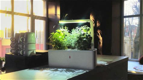 smart herb garden 自動で水やり ledライトで日当たりが悪くてもハーブを育てられる smart herb garden gigazine