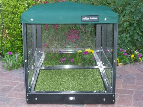 pet patio potty features solutions