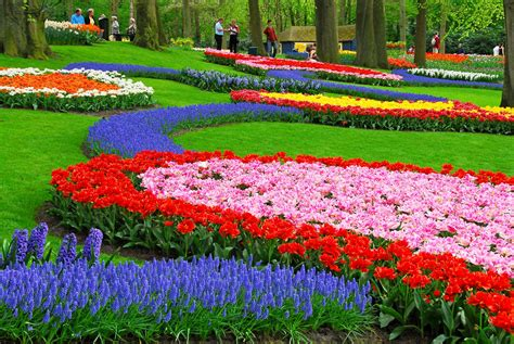 beautiful flower garden keukenhof holland s most beautiful flower garden