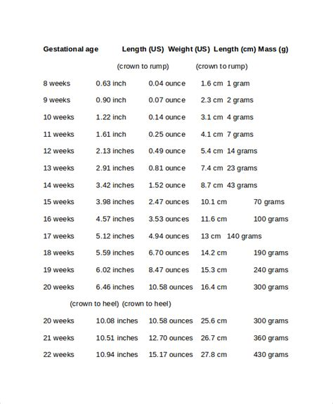 baby size chart template baby growth chart week by week template 6 free word