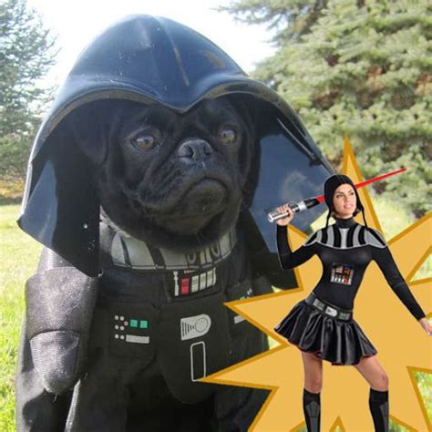 pug darth vader costume the ebola costume is actually real