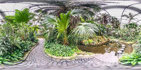 Palmen Garten