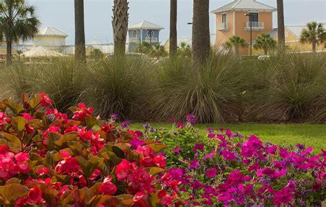 landscape maintenance design gulf coast al landscape