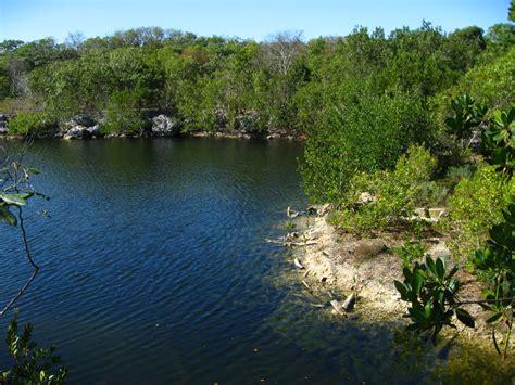 Key Largo Botanical Garden Dagny Johnson Key Largo Hammock Botanical State Park 017