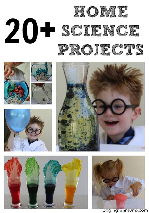 science craft projects 20 home science projects for for