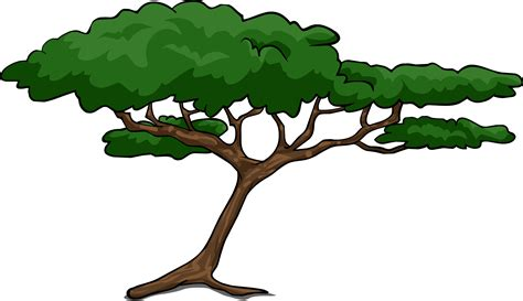 trees clipart clipart rainforest tree pencil and in color
