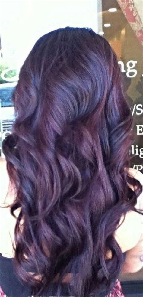 chocolate plum hair color darkest plum brown hair color www pixshark com images