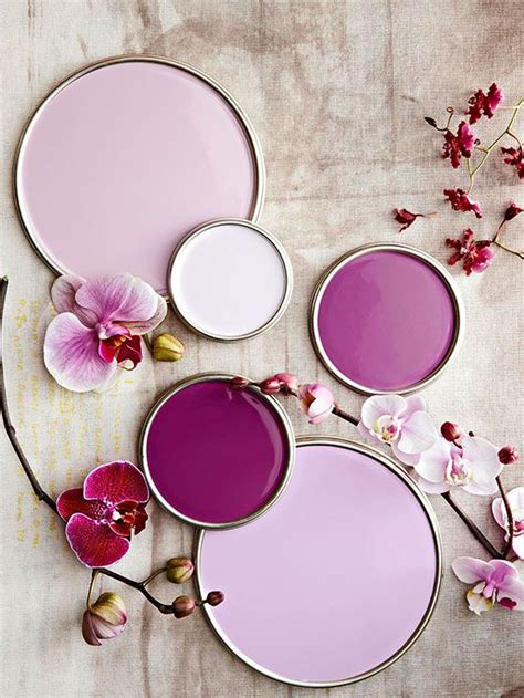 sophisticated pink paint colors 1000 ideas about pink paint colors on pinterest paint