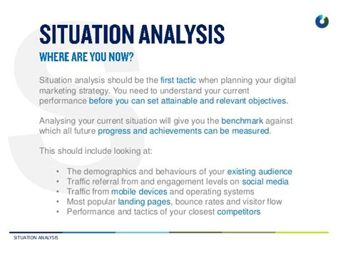 Situational Analysis Template marketing situation analysis exle hosts